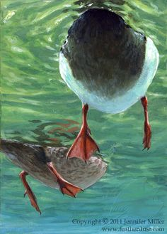 """A Different Perspective"" - painting by Nambroth (Jennifer Miller), via deviantART;  Mallard ducks from a different perspective than the usual painting."