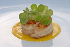 Paupiette de Sole et Cresson - Roulade of Sole with Watercress - Tastes better when served with Nantua Sauce or Beurre Blanc with Capers