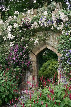We are so happy here at Manor House that all our flowers are in bloom for our Garden Party. Don't you love our gate entry?......................