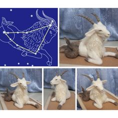 needle felted Capricorn