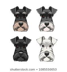 Schnauzer Art, Miniature Schnauzer, Schnauzers, Dog Pin, Cute Animal Drawings, Dog Portraits, Painted Rocks, Illustration, Cute Animals
