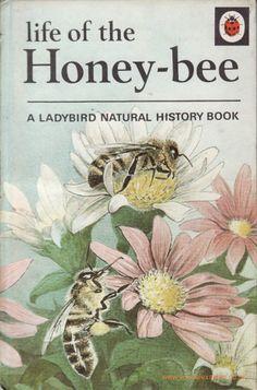 """Life of the Honey-bee"" ~ Vintage Ladybird Book for Children ...."