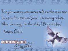 #mj23 #Mockingjay #Katniss