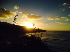New Zealand... Raglan... Howz the view! New Years Eve!