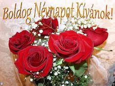Kittike oldala - G-Portál Name Day, Floral Wreath, Birthday, Flowers, Plants, Minden, Google, Floral Crown, Birthdays