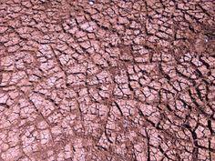 la sécheresse d'Afrique