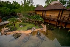 Zambezi River Hippo Camp, Memphis Zoo, Memphis, Tennessee, USA by Torre Design