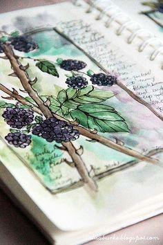 blackberries 2 | Flickr - Photo Sharing!  so so beautiful <3