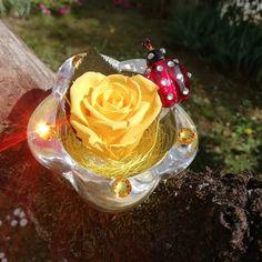 Questa mattina abbiamo scelto un #colore energico come il #giallo ed un raggio di sole per augurarvi una buona giornata! 🌞  #rosabella #rosagioiello #lespetitefleurs #buonagiornata #rosastabilizzata #raggiodisole #madeinitaly Swarovski, Crown, Jewelry, Corona, Jewlery, Jewerly, Schmuck, Jewels, Jewelery