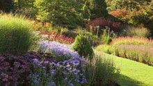 Visit Harlow Carr in autumn
