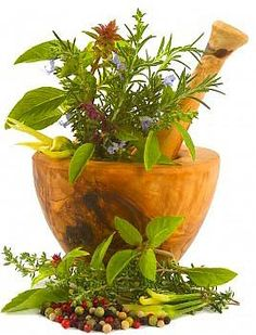 Photo about Healing herbs, spices, and edible flowers (hand carved olive tree mortar and pestle). Image of floral, mortar, healing - 3553141 Fertility Foods, Natural Fertility, Natural Healing, Holistic Healing, Healing Herbs, Medicinal Herbs, Herbal Remedies, Natural Remedies, Medicinal Plants