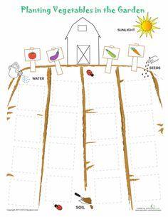Worksheets: Plant a Vegetable Garden
