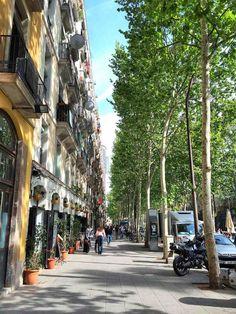 BARCELONA Barcelona, Street View, Travel, Viajes, Barcelona Spain, Destinations, Traveling, Trips
