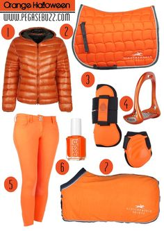 www.pegasebuzz.com | Equestrian Fashion Love all of it apart from the jacket.