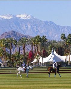 San Diego Polo Club:    The San Diego Polo Club was established in 1986. It has demonstrated to be a prestigious institution in the sport of polo. The San Diego polo club lies in a 60 acre land located in Rancho Santa Fe. It has 5 wondrous polo fields with world class value.