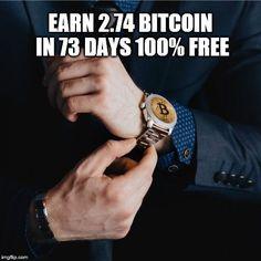 surf per bitcoin