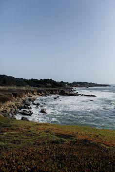 Bean Hollow State Beach in California
