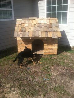 My pallet dog house