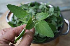 """Les herbes sauvages comestibles, ces """"mauvaises"""" herbes qu'on piétine, qu'on arrache du potager pour faire place aux semis, ces mal aimées sont de petits trésors nutritionnels et gustatifs pour plusieurs d'entre nous! Pourquoi découvrir les plantes sauvages comestibles? elles sont remplies de vitamines et minéraux leur saveur est incomparable! elles sont parfaitement fraîches elles ajoutent …"""