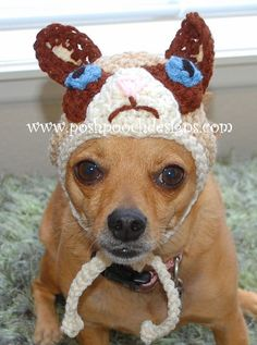 My Chihuahua needs a Grumpy Cat hat!   The Grumpy by poshpoochdesigns, $3.99