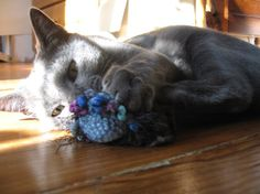 Good idea... crochet cat toys and put plastic bags in them instead of just filling for an extra fun surprise.