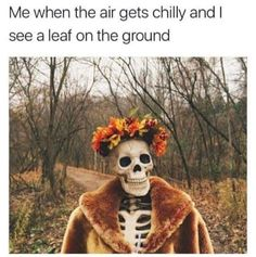 A Big Batch of Pics and Memes for the Exquisite Minds Pics) Halloween Meme, Spooky Memes, Spooky Scary, Cool Halloween Costumes, Fall Halloween, Halloween Party, Halloween Decorations, Halloween Makeup, Halloween Countdown