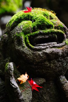 Moss covered Buddha statue in Otagi, Kyoto, Japan
