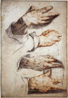 Hendrick Goltzius, 1558-1617, Dutch, Four Studies of Hands, c.1588-89.  Black and red chalk on light coloured paper, 30.9 x 20.7 cm.  Städelsches Kunstinstitut, Frankfurt.  Northern Mannerism.