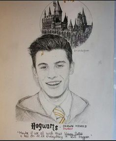 My 2 favorite things in the world (SHAWN MENDES & HARRY POTTER)