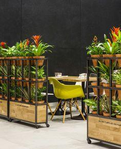 room divider plant trolleys
