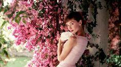 Las fotos más íntimas de Audrey Hepburn