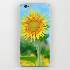 Sunflower in the Summer iPhone Skin by stdjura Iphone Skins, All You Need Is, Vinyl Decals, Super Easy, Sticks, Bubbles, Phone Cases, Change, Model