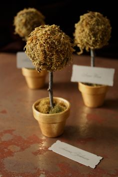 Find full instructions at Project Wedding. I added an extra autumnal touch by gilding the mini terracotta pots with a gold leaf kit (available at craft stores for around $8) before beginning the project.