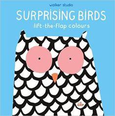 Surprising Birds book cover