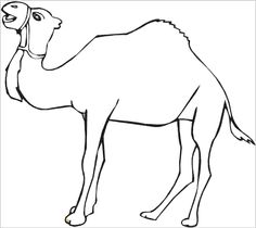 Camel Coloring Page for Kids Midnight at the Oasis Pinterest