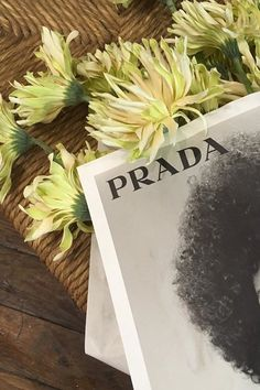 Et si on s'offrait des fleurs Prada? Boujee Aesthetic, Aesthetic Pictures, Love Flowers, My Flower, Plants Are Friends, Photo Wall Collage, New Wall, Autumn Inspiration, Flower Decorations