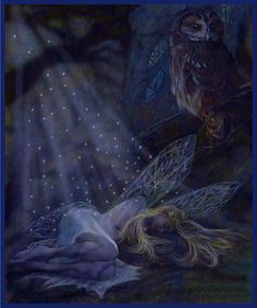 ...lovely, peaceful picture of a beautiful fairy dreamer and her silent, watchful owl guardian...