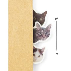 Little Cats hiding inside your notes!? Hide and Seek Cats Sticky Flags Collection