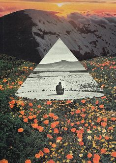 Harmony with flowers by Mariano Peccinetti #collage