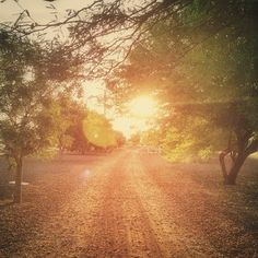 A running path near the #Agritopia Farm in #GilbertAZ by Joshua Laughery.