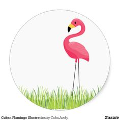 Cuban Flamingo Illustration Sticker - June 24 - 16x