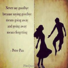 Never say goodbye, wise words from mischievous Peter Pan Great Quotes, Quotes To Live By, Inspirational Quotes, Quick Quotes, Change Quotes, Never Say Goodbye, Goodbye Goodbye, Goodbye Quotes, Goodbye Party