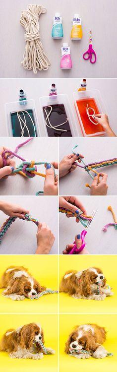 Como hacer un #juguete para #perros chulísimo!