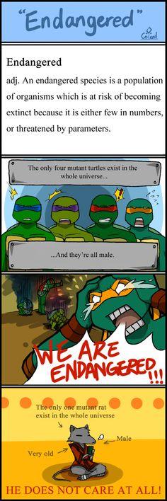TMNT comic