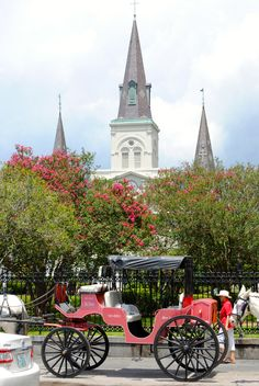 You have to go on a carriage ride through the city when visiting New Orleans! You get a history of the city and get to see many of the beautiful sites!