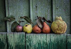 autumn tumblr photography - Google keresés