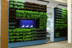 DIRTT: modular workspace wall systems...Breathe system allows for integrating plants into wall panels
