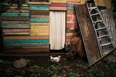 Michael Christopher Brown. HONDURAS. 2015