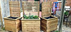 Free plans to build your own DIY privacy planter / privacy screen for your yard. DIY privacy planter, DIY privacy screen, privacy screen, planter with screen