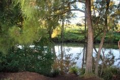 Karuah Nature Reserve, NSW